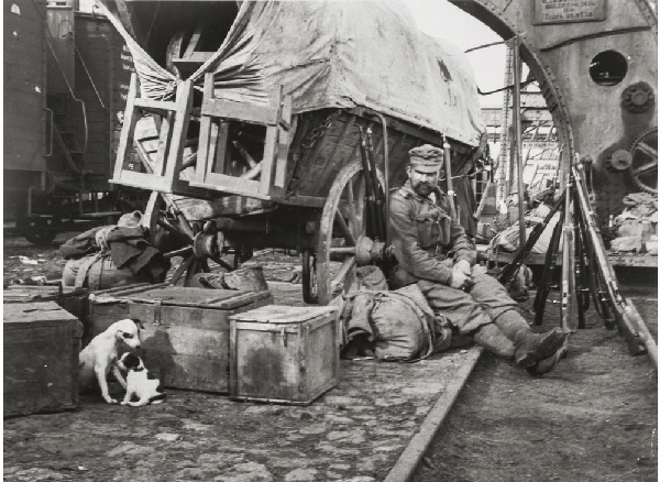Венгрия, 1918