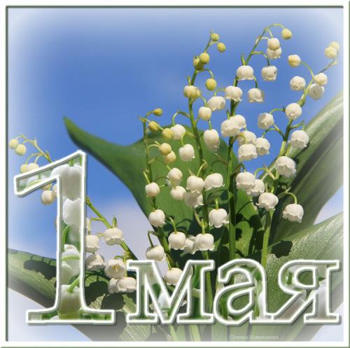 http://nabiraem.ru/upload/images/1367313888.M150729P31403Q.jpg